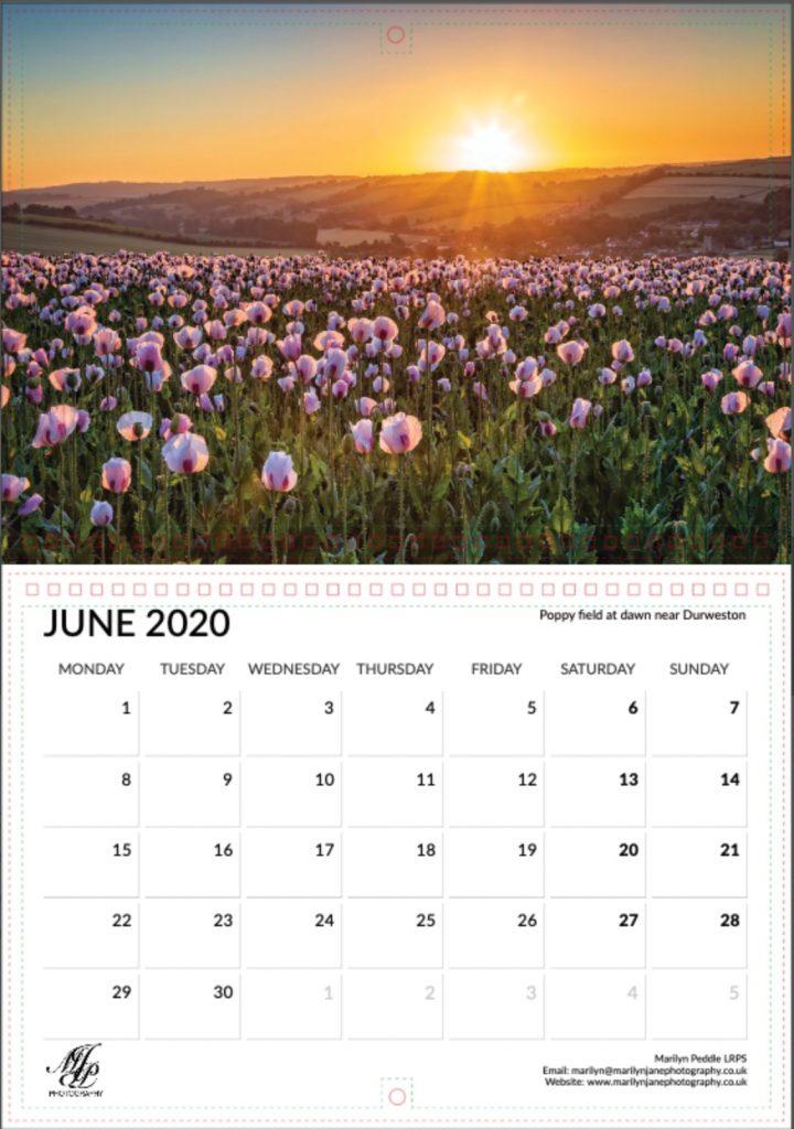 Sample Page - Poppy field at dawn near Durweston